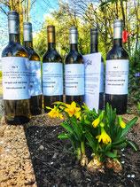 6er Wein Paket Weißwein/Rotwein/Rosé trocken