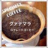 グァテマラQグレードコーヒー