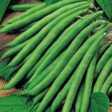 Haricot Vert  Alsace