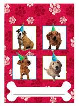 Hunde Partytüten