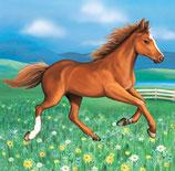 Pferd Servietten