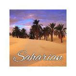 Saharian 76/24