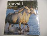 CALENDARIO CAVALLI 2020 (MOD.2)