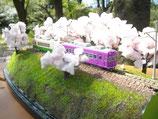 桜並木の単線  1/150  Nスケール