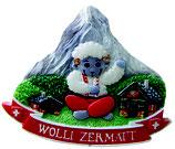 3D-Magnet Wolli