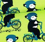 Sarouelopettes courtes l'ours à vélo fond vert pomme