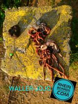 WALLER-JOJO KOMPLETTMONTAGE