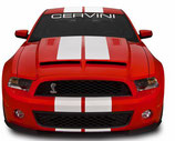 10-14 Mustang Type 4 Ram Air Hood