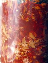 Johanniskraut Tinktur