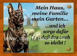 Holandse herder