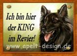 Belgishcer Schäferhund