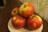 "Äpfel Sorte ""Wellant"""