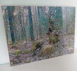"""lunArtis Kunstdruck unter Acrylglas """"Die verborgene Welt"""""""