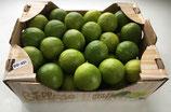 Caisse de Citrons Verts 4,5kg environ