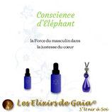 Conscience d'Eléphant