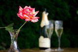 Champagnerfan-Paket für 6 Monate