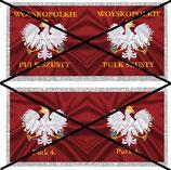 1:32 Flag Napoleon Polen Infanterie #01