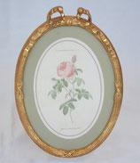 リボン バラ額絵 壁掛け ルドゥーテ バラ ピンク 楕円 薔薇  ヴィクトリア ゴールド 金 クラシック 1383186
