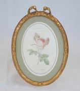 リボン バラ額絵 壁掛け ルドゥーテ バラ ピンク 楕円 薔薇  ヴィクトリア ゴールド 金 クラシック 1383187