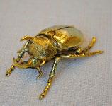 北欧雑貨 おしゃれ 真鍮 昆虫 カブトムシ Beetle ビートル ブラス BROSTE COPENHAGEN 14461145-2 02BS-2