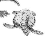 北欧雑貨 昆虫 メタル カメ ウミガメ 亀 tortoise ニッケル METAL BROSTE COPENHAGEN 14461144-3