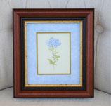 額絵 ルドゥーテ ブルー 長方形 花 イタリア製 ITALY 天然木 ポプラ ベルトッツィ BERTOZZI 908475