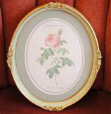 壁掛け ルドゥーテ バラ ピンク 楕円 薔薇  ヴィクトリア ゴールド 金 クラシック 77089PI-A