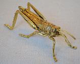 北欧雑貨 おしゃれ 真鍮 昆虫 殿様バッタ Lady grasshopper レディー グラスホッパー アンティーク ブラス BROSTE COPENHAGEN 14461101-3 06ABS-3