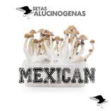 Kit Mexican (setas)*