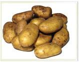Pommes de terre Allians 10kg