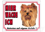 Warntafel Yorkshire Terrier