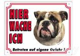 Warntafel Bulldogge