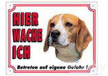 Warntafel Beagle