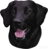 Aufkleber Flat Coated Retriever