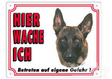 Warntafel Malinois