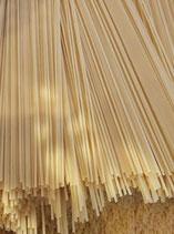 Spaghettis vrac Bio