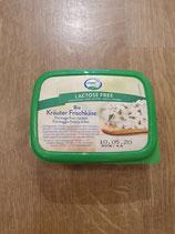 Fromage à tartiner aux herbes sans lactose