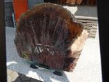 Ambonia - Maserknollen - Holz