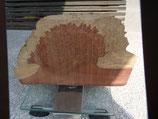 Ambonia Maserknollen - Holz
