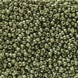 Miyuki Rocailles 11/0 - Dark Steel Green (5112·B)
