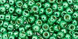 Toho Rocailles 11/0 - Permafinish Galvanized - Spring Green - (PF588 †‡)