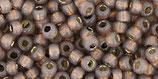 Toho 8/0 - PermaFinish - Silver-Lined Milky Pomegranate (PF2114 †‡)