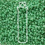 Miyuki Rocailles 11/0 - Dark Mint Green (5105)