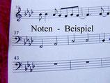 Igel Isidor: Schlaflied Partitur mit Cellostimme Kopiervorlage PDF, Download