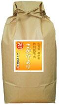 さがびより(相知産) 玄米10kg