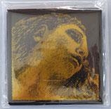 Fiolinstrenger Pirastro Evah Pirazzi gold 4/4 sett medium