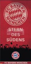 """889208 Panel FCB """"Stern des Südens"""""""