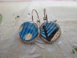 Boucles d'oreilles cabochons de 12 mm, de couleur bleue avec une petite touche de marron.