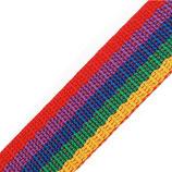 Gurtband 25mm multicolor PP
