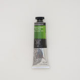 Sennelier Extra-Fine Oil Colour Tube 40ml-S2 [819] -Sap Green